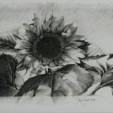 Joyful Atmosphere, Sunflower III
